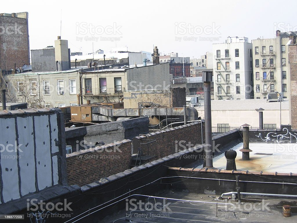 Brooklyn Rooftop royalty-free stock photo