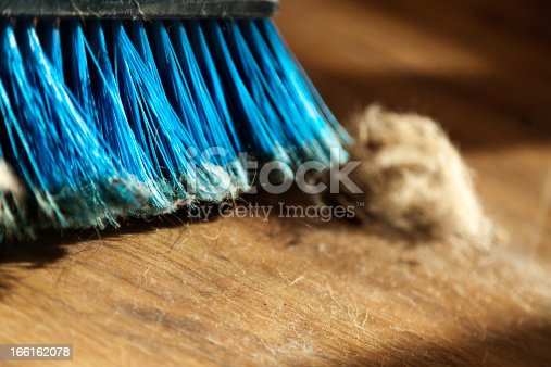 istock Broom, Dust and Fur Ball on Parquet Floor 166162078