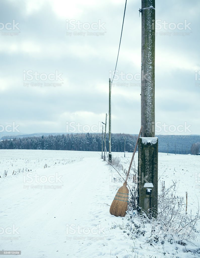 Broom in winter landscape stock photo
