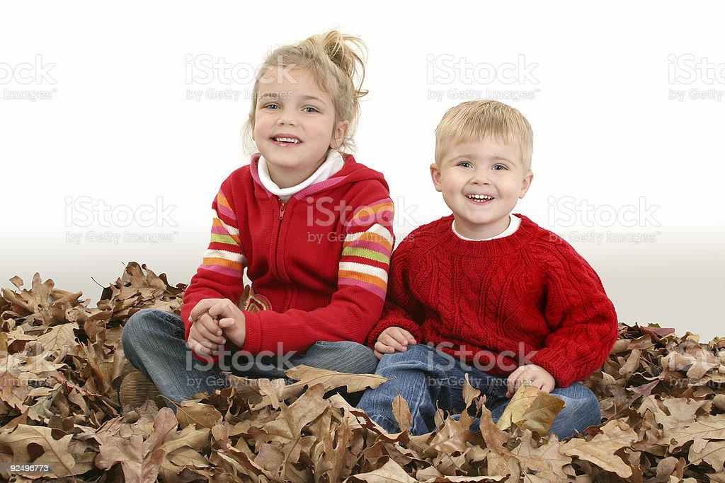 Brother and Sister Sitting in Pile of Leaves royalty-free stock photo
