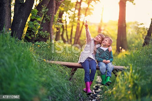 618034312 istock photo Brother and sister sitting on bridge in forest 473112562