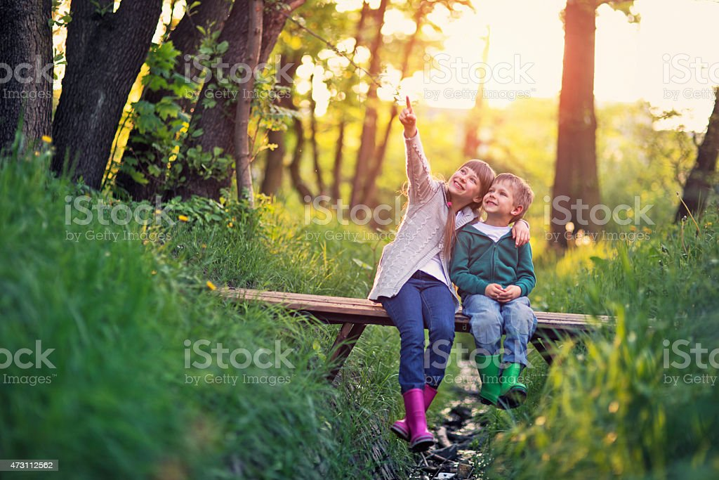 Brother and sister sitting on bridge in forest stock photo