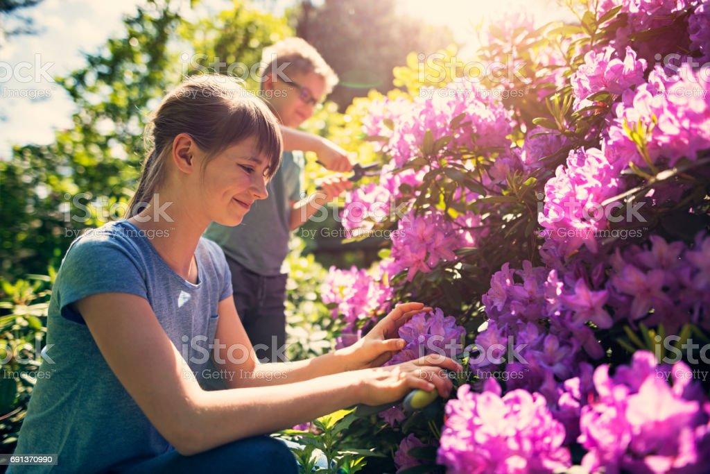 Bruder und Schwester, die tendenziell Blumen im Garten – Foto