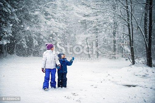 istock Brother and sister walking in snowy forest 615399426