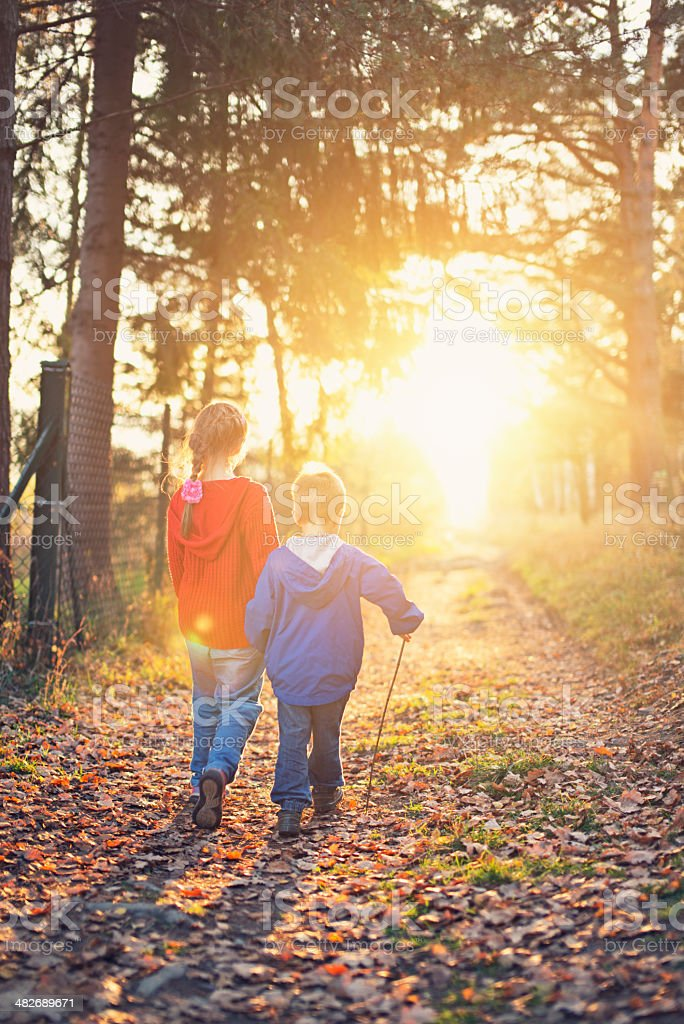 Brother and sister walking into the sunset stock photo