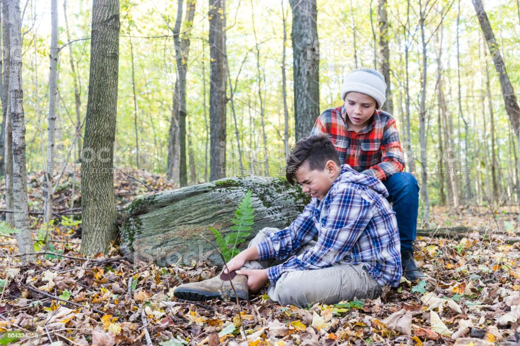 Brother helping his injured brother in the forest stock photo