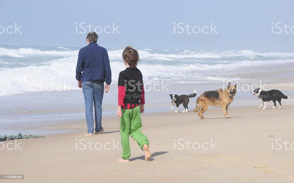 Brothers and dogs at a Mediterranean Israeli beach royalty-free stock photo
