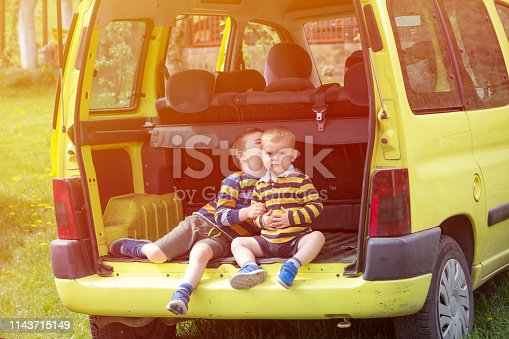Two little brothers sitting at the car trunk.