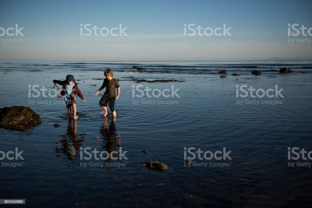 Brothers flinging seaweed at each other at sunset stock photo