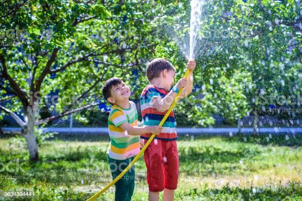 Bracia Bawiący Się Pluskać Się Wodą W Wiosce - zdjęcia stockowe i więcej obrazów Brat