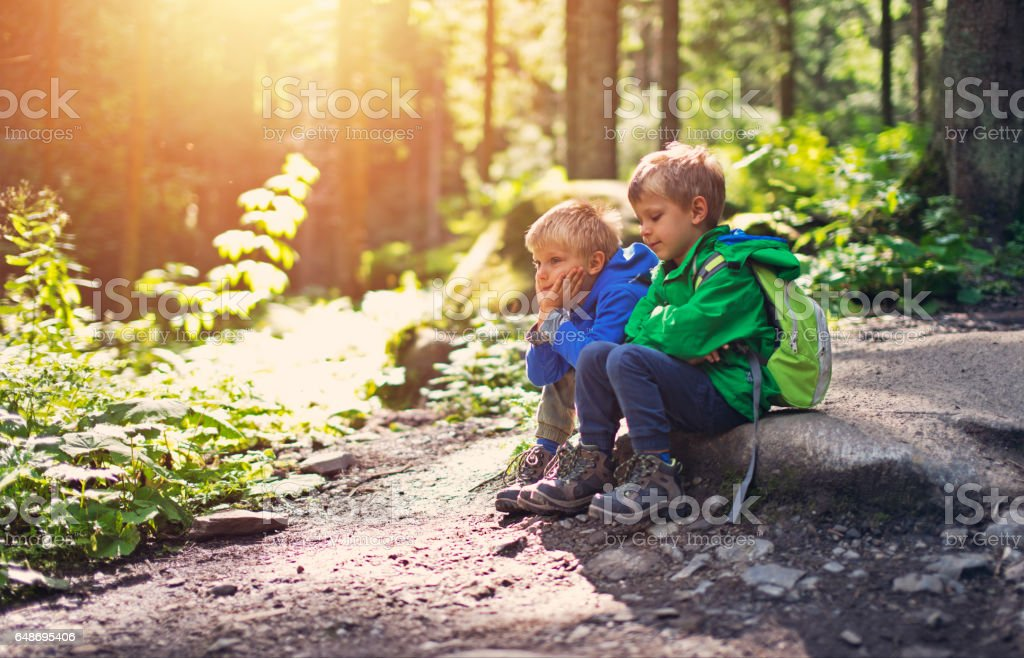 Brothers hikers resting in a forest. stock photo