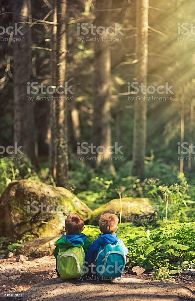 Brothers hiking and resting in a forest. stock photo