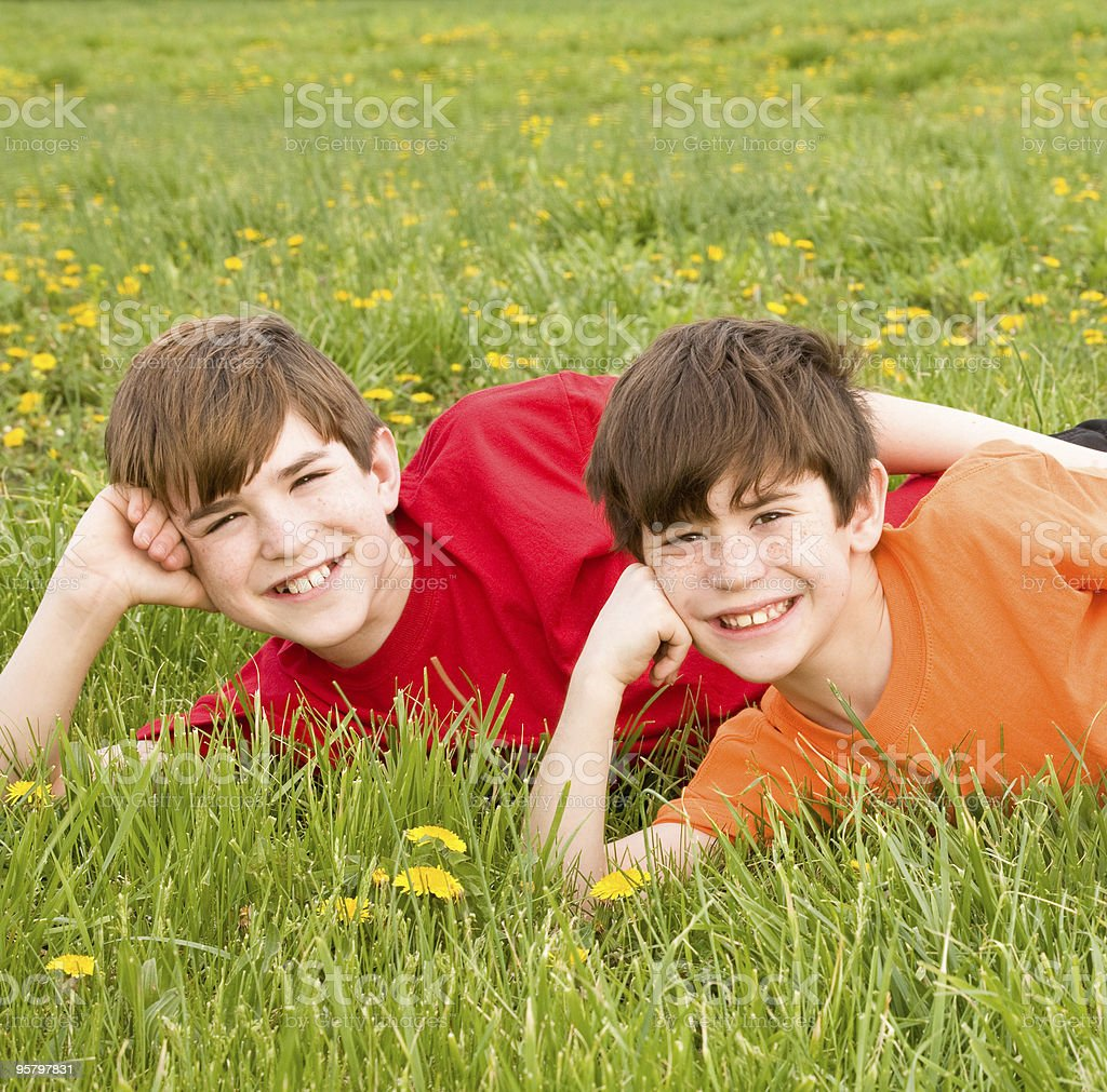 Brothers Laying in a Field royalty-free stock photo