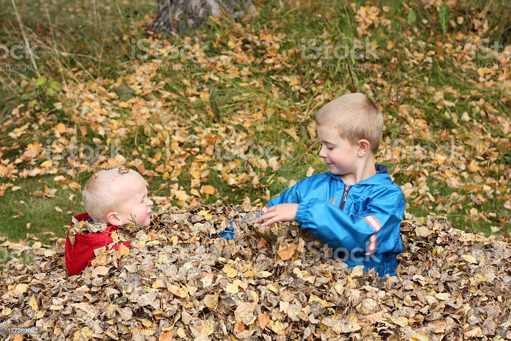 Brothers Playing In Fall Leaves royalty-free stock photo