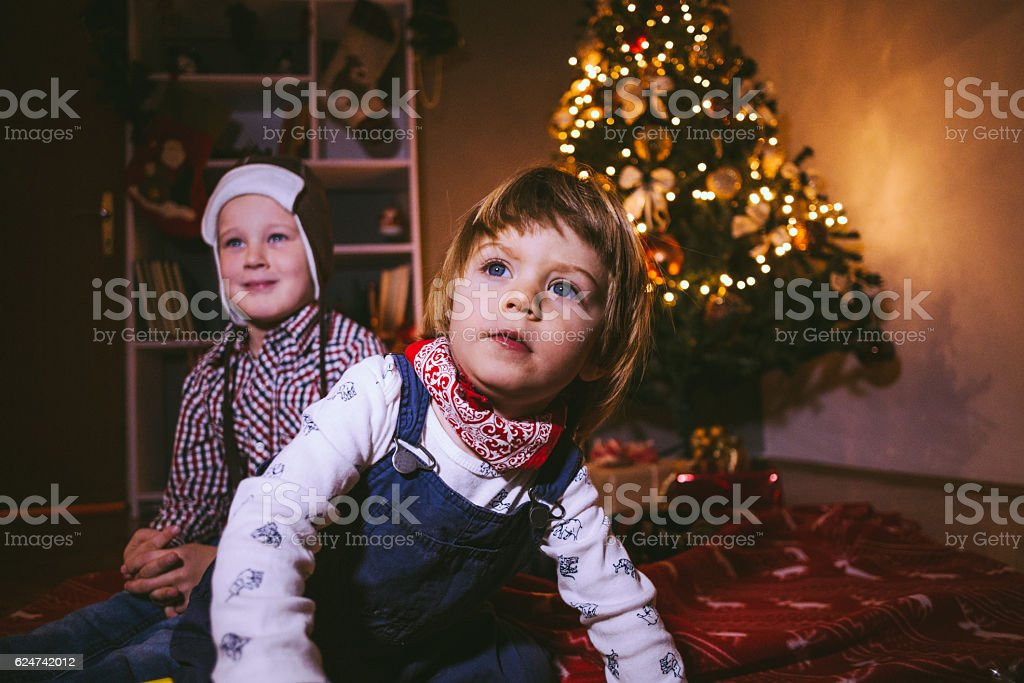 Brothers Spending Christmas at Home stock photo