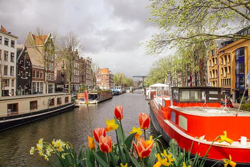 Photo libre de droit de Canal Brouwersgracht Bateaux À Amsterdam Paysbas banque d'images et plus d'images libres de droit de {top keyword}