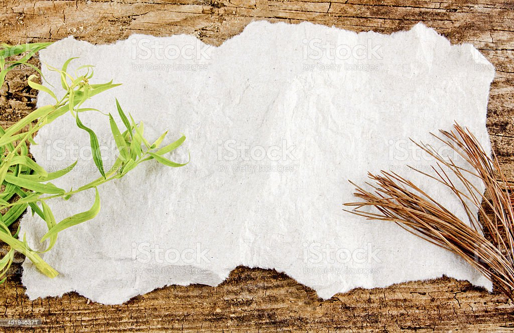 Brown And Green Leaves Background stock photo