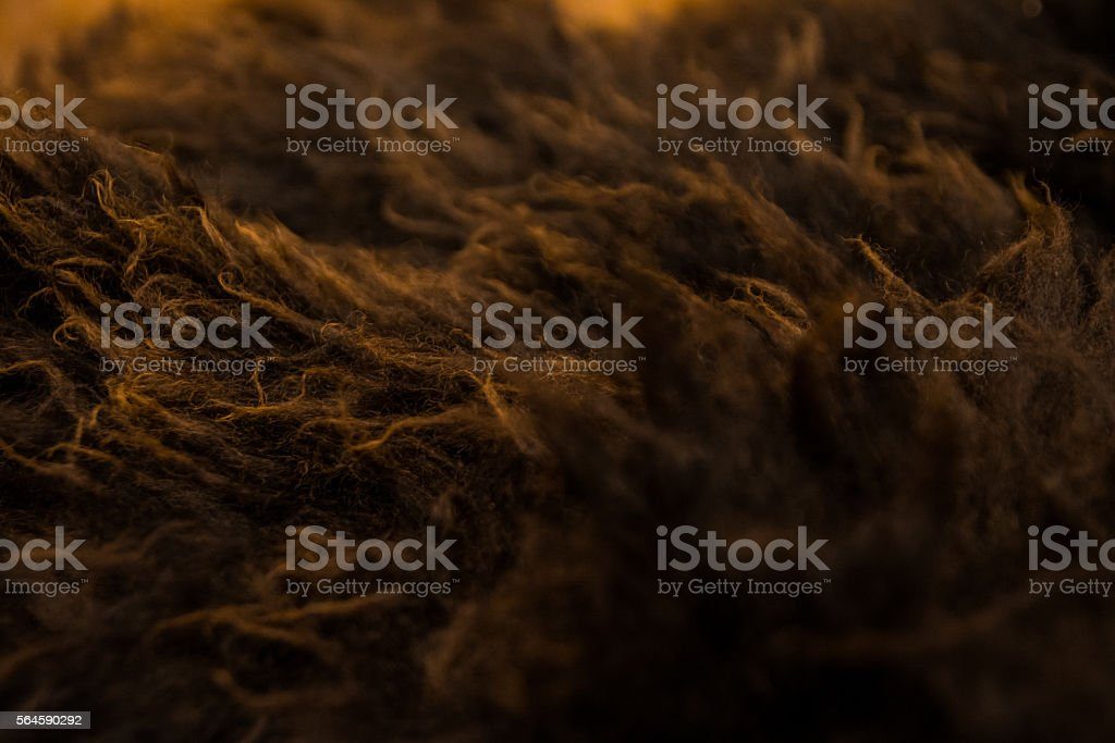 Brown and Orange Fur Texture Macro Shot stock photo