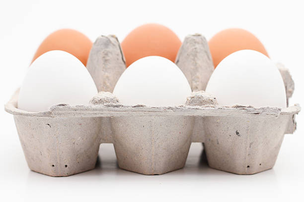 Brown and White Eggs in a Carton stock photo