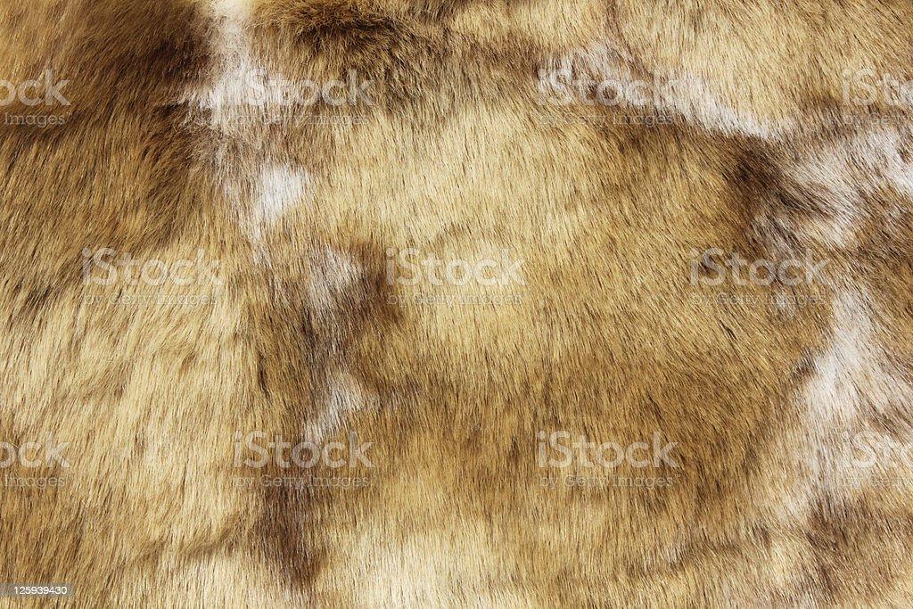 Marrón primer plano de piel animal - foto de stock