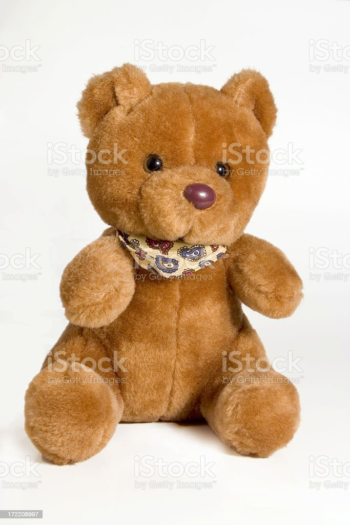 Brown bear isolated royalty-free stock photo