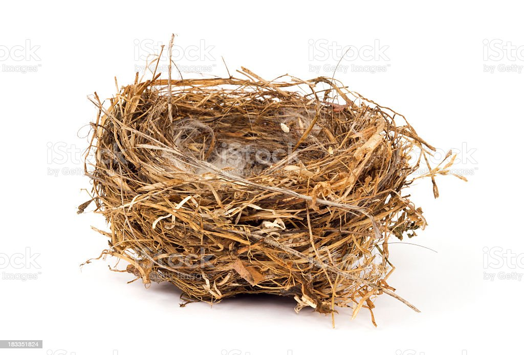 A brown birds nest with smoke coming out stock photo