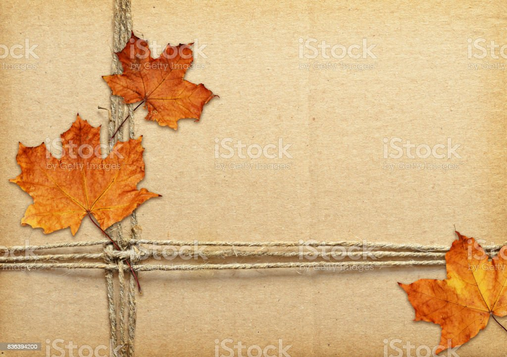 Brown Cardboard Tied With Rope And Autumn Dry Leaves Stock Photo - Download  Image Now