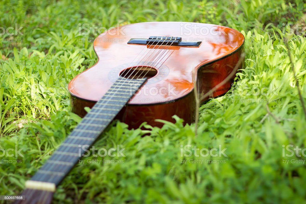 Brown classic guitar lying on grass stock photo