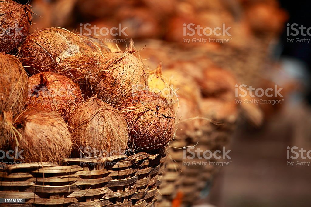 Brown coconut on traditional bazaar in India. royalty-free stock photo