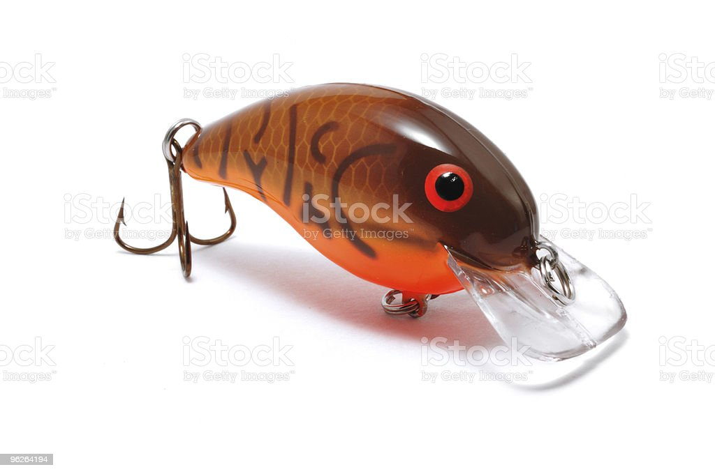 Brown Crankbait with Orange Belly royalty-free stock photo
