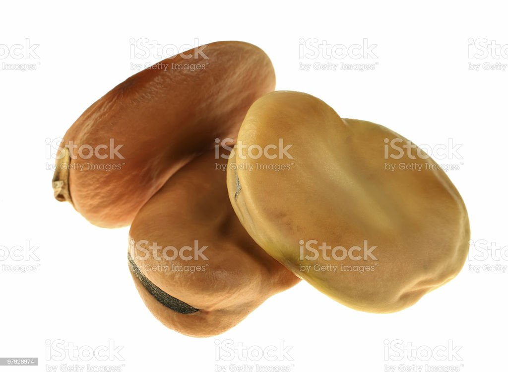 Brown dry bean royalty-free stock photo