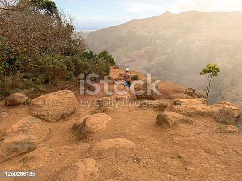 istock Brown dry rocks and  sand. an athletic woman is walking between rocks. desert Mountains at Waimea Canyon State Park in Kauai, Hawaii islands, USA 1250266135