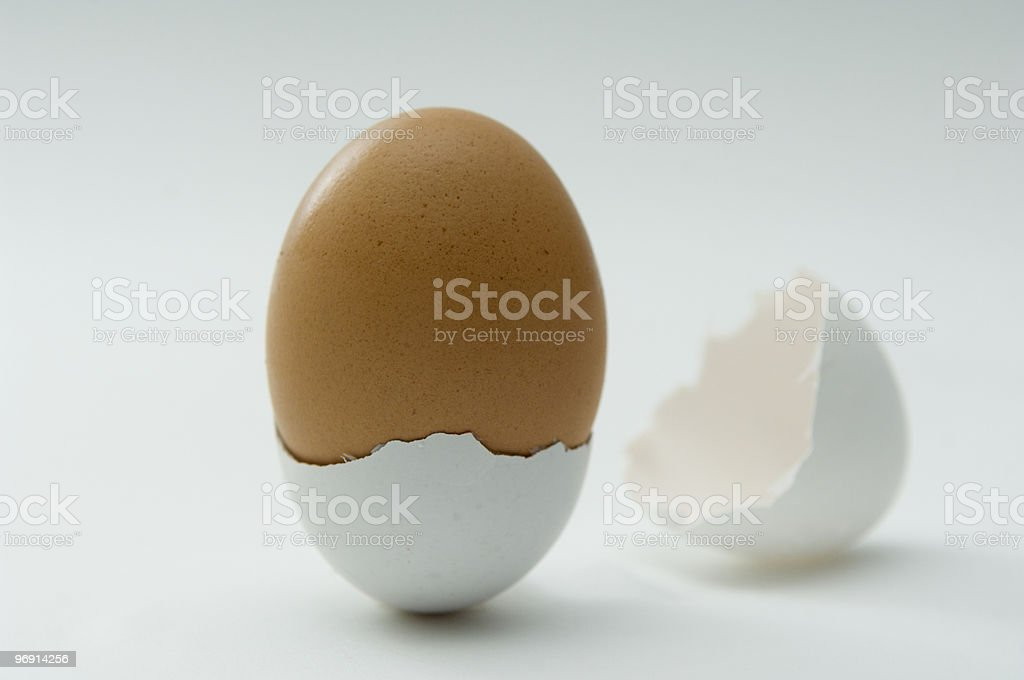 Brown egg in a white shell royalty-free stock photo