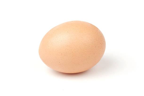 brown egg stock photo