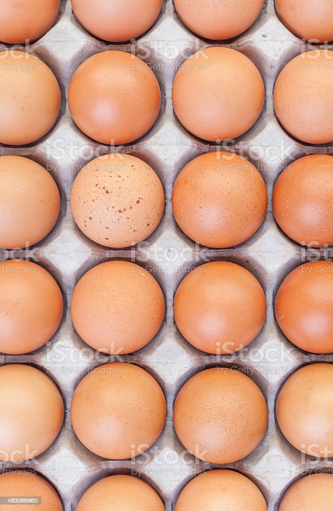 Brown eggs in cardboard on white background. stock photo