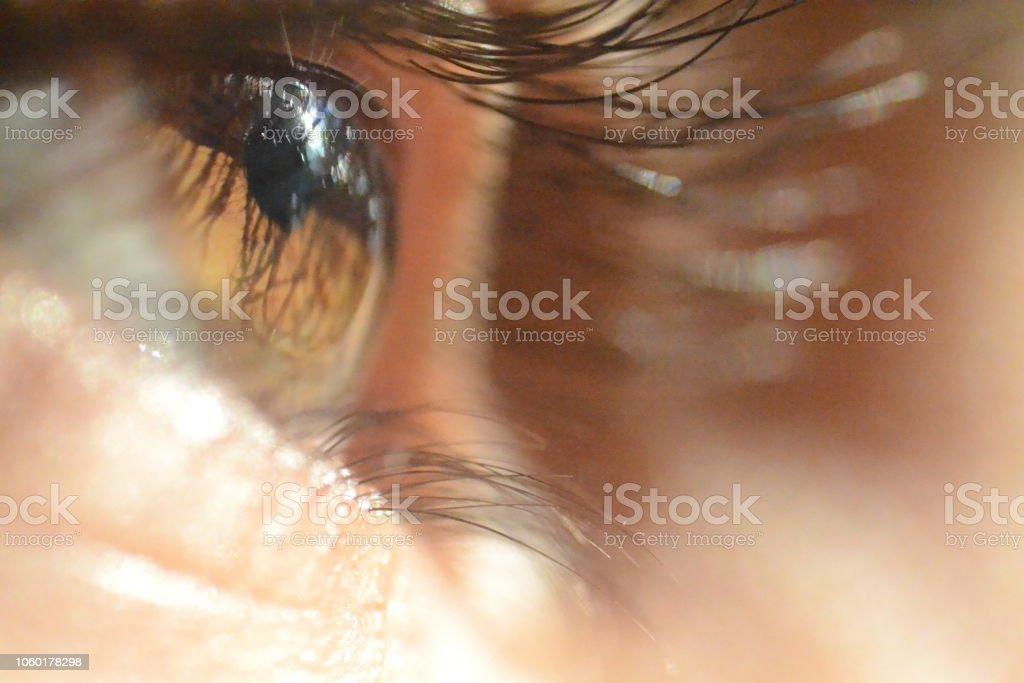 Bruine ogen foto