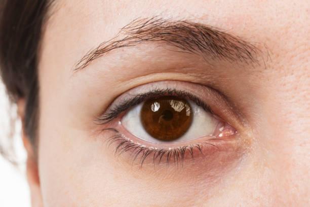 Brown Eyes - Close Up stock photo