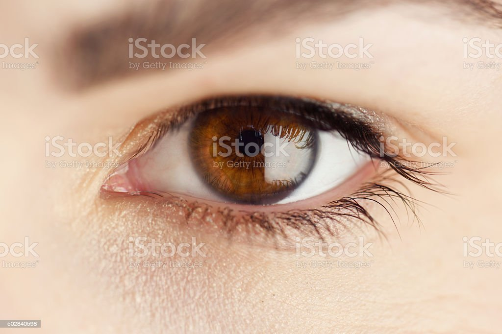 Brown eyes of a woman stock photo
