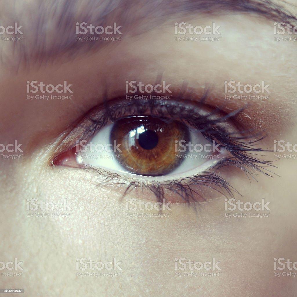 Brown Augen – Foto