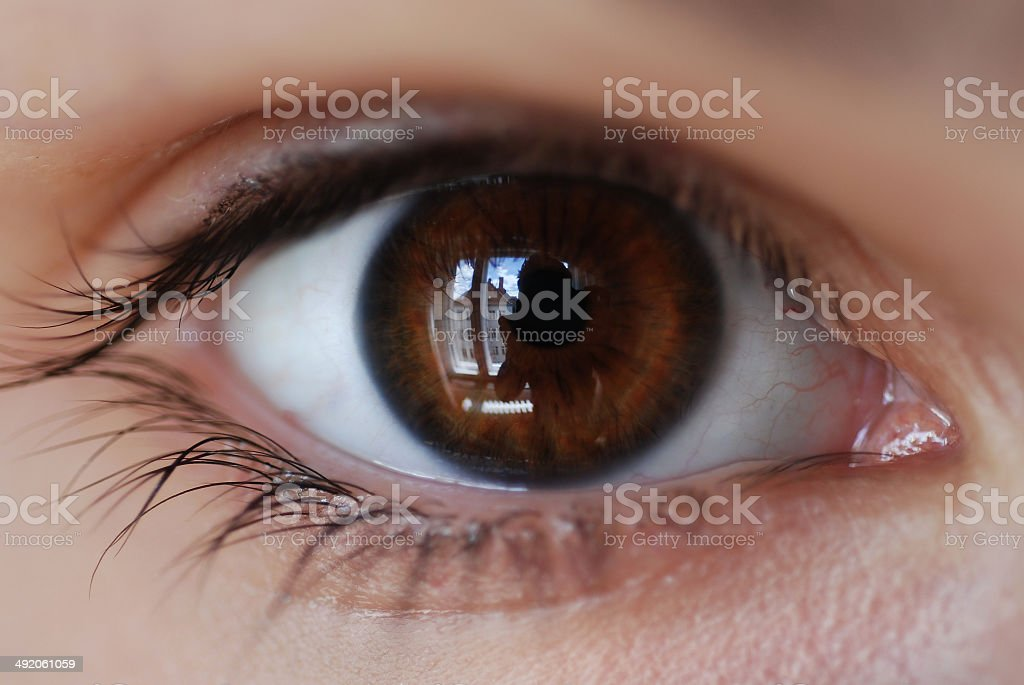 Brown eyes stock photo