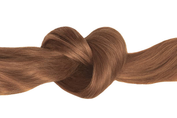 braune haare knoten in form von herzen, isoliert auf weiss - glatze schneiden stock-fotos und bilder