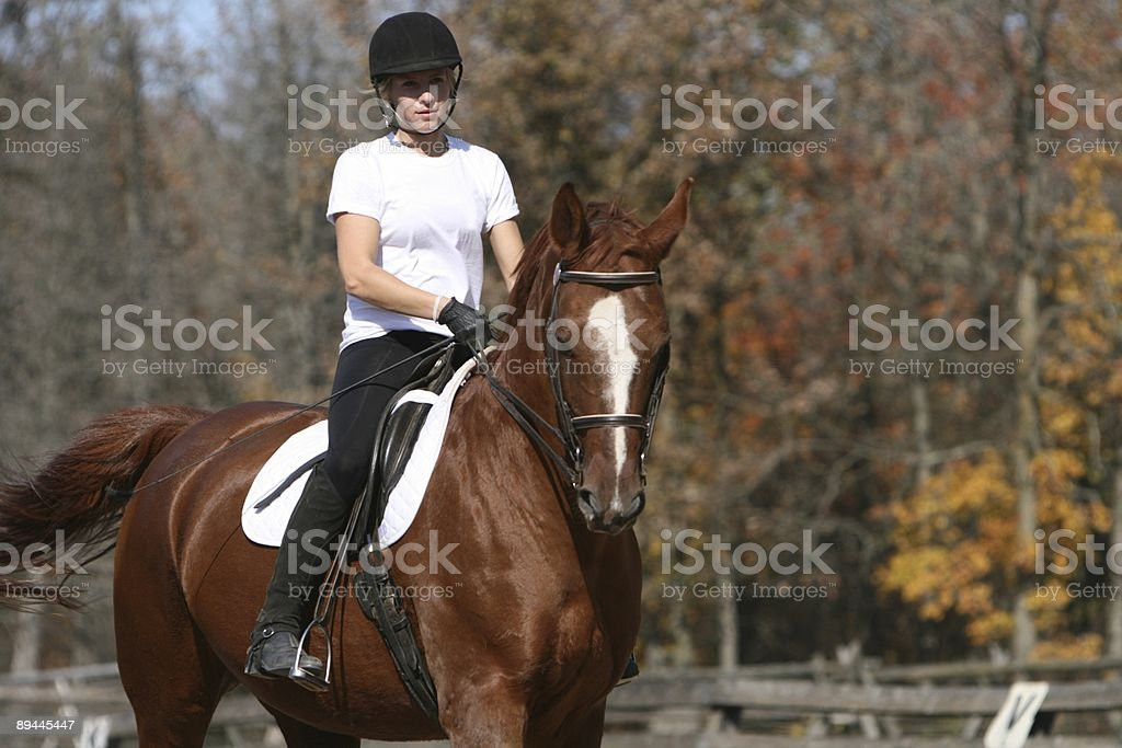 Brown horse and rider... royalty-free stock photo