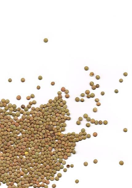 Brown Lentils stock photo