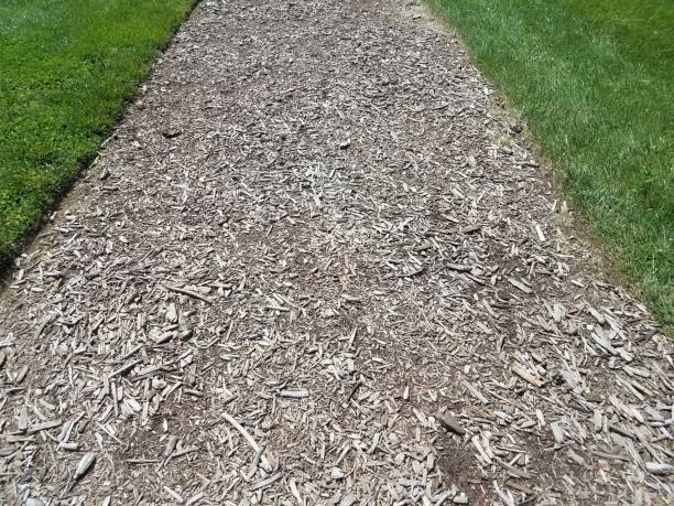 brown mulch or wood chip trail and green grass stock photo