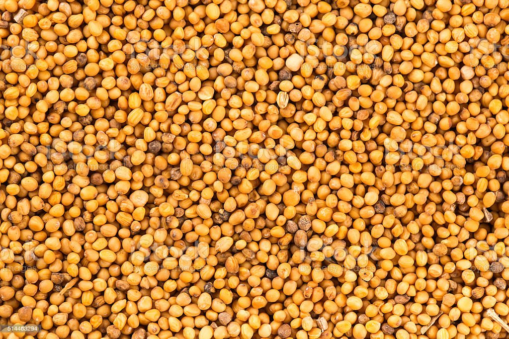 Brown mustard seeds abstract background stock photo