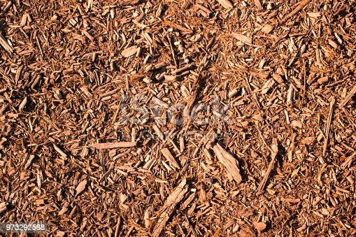 Brown woodchip mulch background or texture. Gardening, playground, parks, paths, texture, natural.