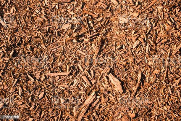 Photo of Brown, natural mulch texture with a warm atmosphere
