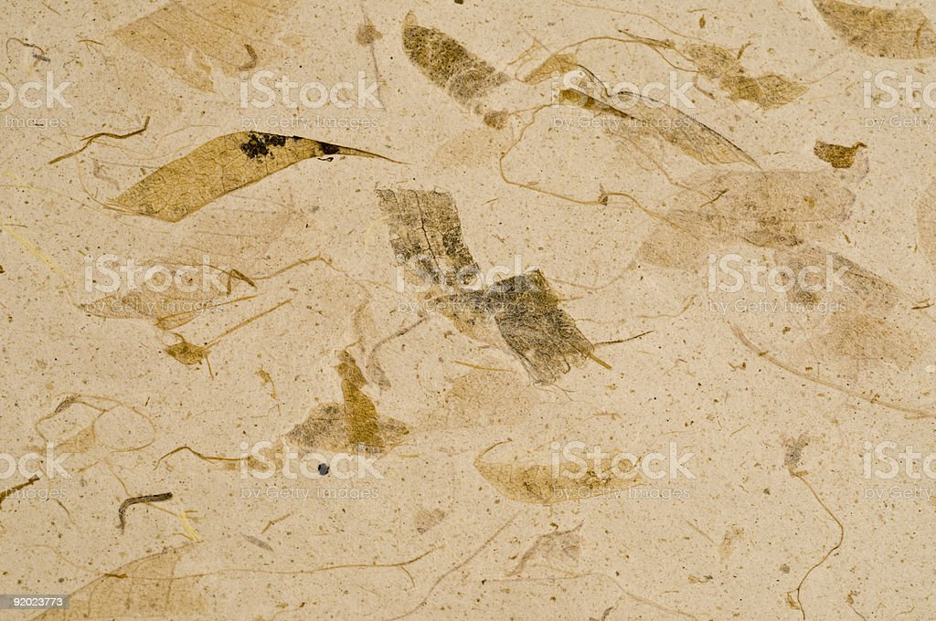 Brown Paper Background  Abstract Stock Photo