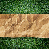 istock brown recycled paper ripped on grass with space for text 486205723