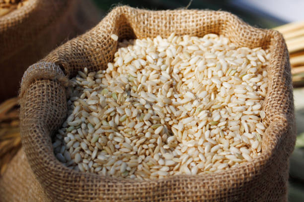 Brown rice in bag stock photo